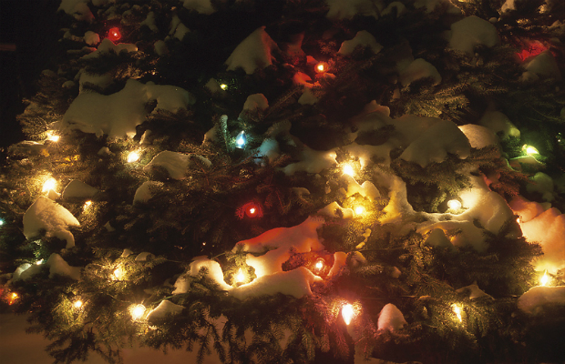 Holiday Energy Saving Ideas